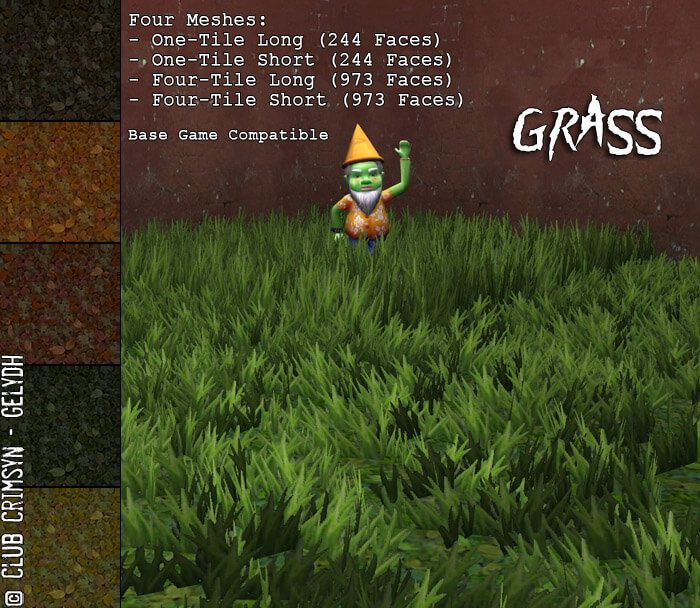 decorativegrass